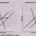 Supply, Demand, and Immigratlon