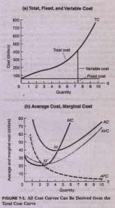 Average Fixed and Variable Cost