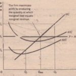 THE MARGINAL COST CURVE AND THE FIRM'S SUPPLY DECISION