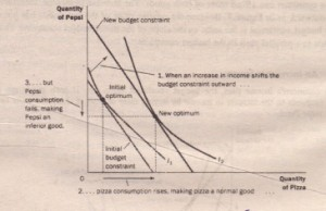 2How CHANGES IN INCOME AFFECT THE CONSUMER'S CHOICES