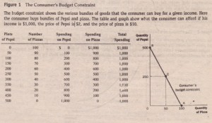 THE BUDGET CONSTRAINT WHAT THE CONSUMER CAN AFFORD