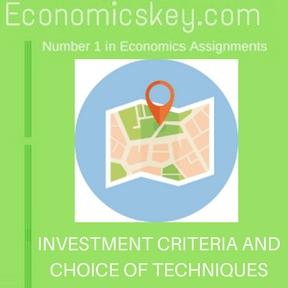 INVESTMENT CRITERIA AND CHOICE OF TECHNIQUES
