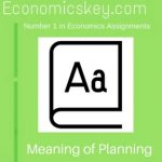 Meaning of Planning