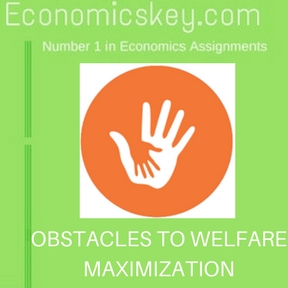 OBSTACLES TO WELFARE MAXIMIZATION