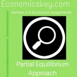 Partial Equilibrium Approach