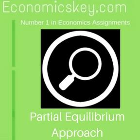 Partial Equilibrium Approach