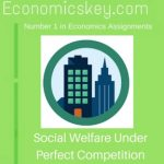 Social Welfare Under Perfect Competition