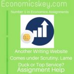 Another Writing Website Comes under Scrutiny. Lame Duck or Top Service?