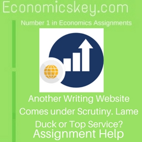 Another Writing Website Comes under Scrutiny. Lame Duck or Top Service- Assignment help