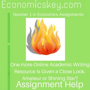 One more Online Academic Writing Resource Is Given a Close Look. Amateur or Shining Star- Assignment help