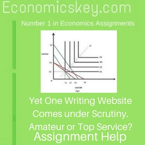 Yet One Writing Website Comes under Scrutiny. Amateur or Top Service-Assignment help