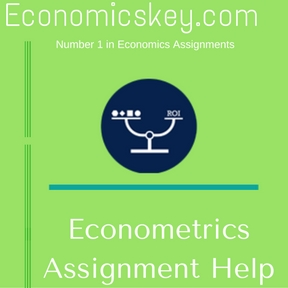 Get Econometrics Assignment Help from Professional Writers