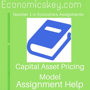 Capital Asset Pricing Model Assignment help