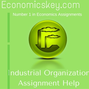 Industrial Organization Assignment Help