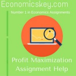 Profit Maximization Assignment Help