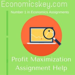 Profit Maximization Assignment Help