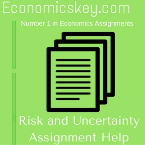 Risk and Uncertainty Assignment Help