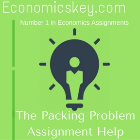 The Packing Problem Assignment Help