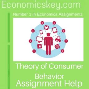 Theory of Consumer Behavior Assignment help